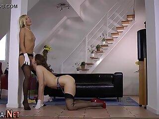 Stockings slut sucks dick